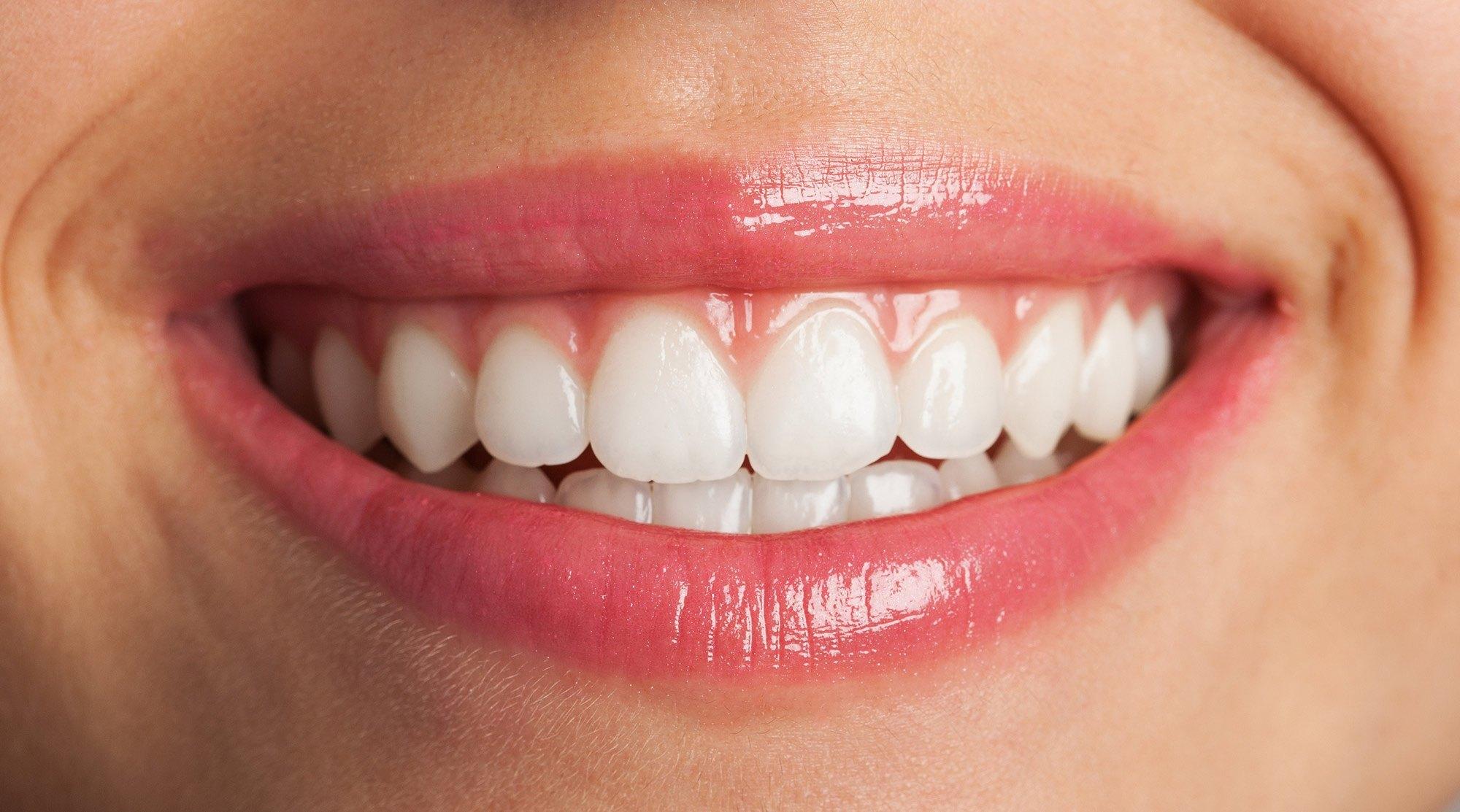 Tipos de dientes y sus funciones - Acosta Cubero